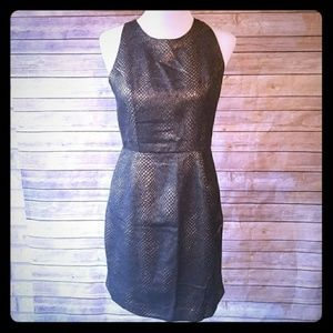Jack Black & Gold Party Dress Sz 6
